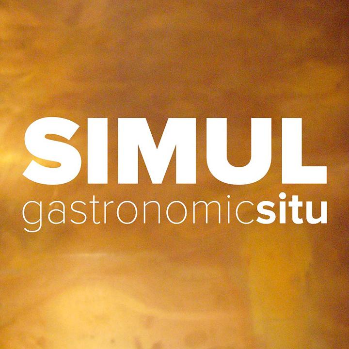 simul-logo